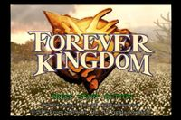 Video Game: Forever Kingdom