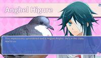 Character: Higure Anghel