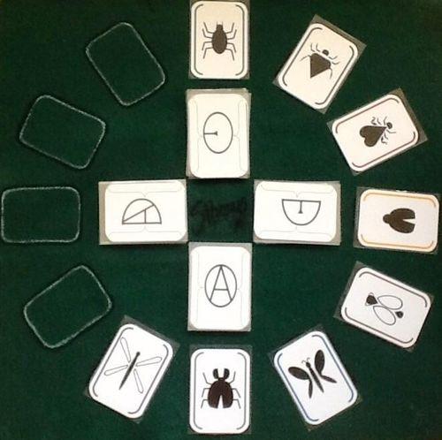 Board Game: Silvanus