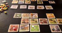 Board Game: Rivals for Catan