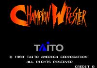 Video Game: Champion Wrestler
