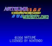 Video Game: Natsume Championship Wresting