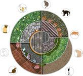Board Game: Cat Chess