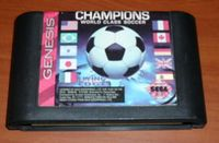 Video Game: Champions World Class Soccer