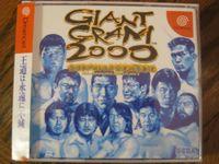 Video Game: Giant Gram 2000: All Japan Pro Wrestling 3